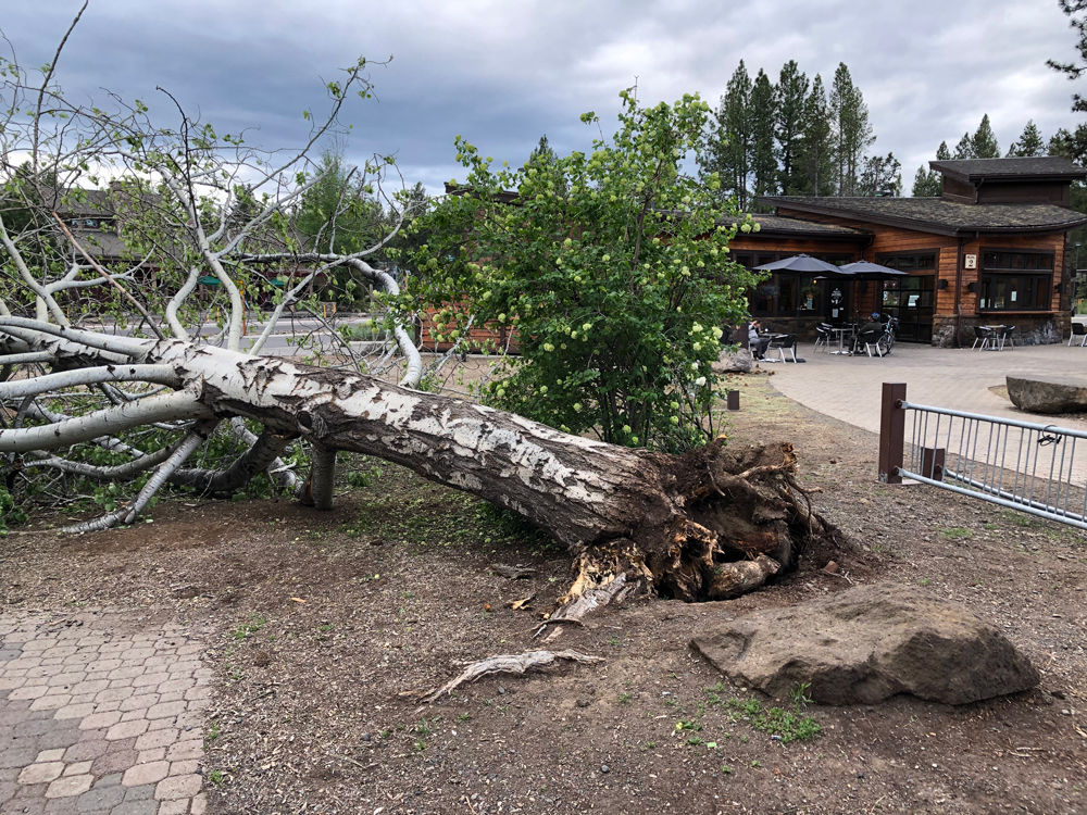 Storm blows through Central Oregon
