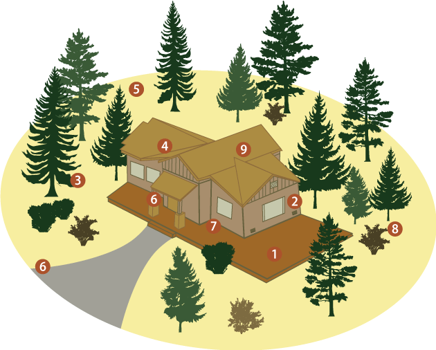 Illustration on how to create defensible space